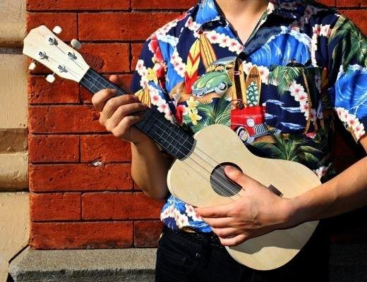 Gitary lytary Ukulele
